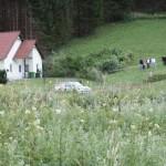 schneeberglandrallye5