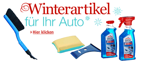 winterartikel-fur-das-auto-amazon
